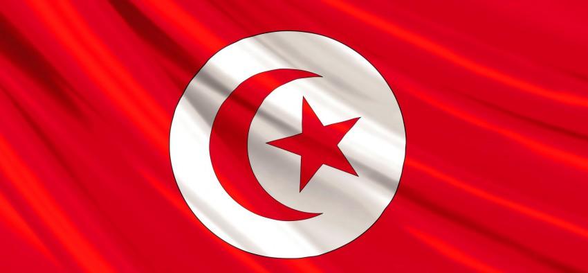 Gaz naturel Tunisie France