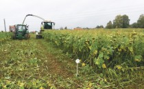 Méthanisation digestat biogaz biométhane agriculture