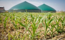 biogaz GRDF gaz renouvelable France gaz naturel